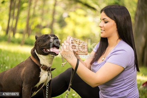 Beautiful young woman puts muzzle basket to her cute stafford terrier in the park.