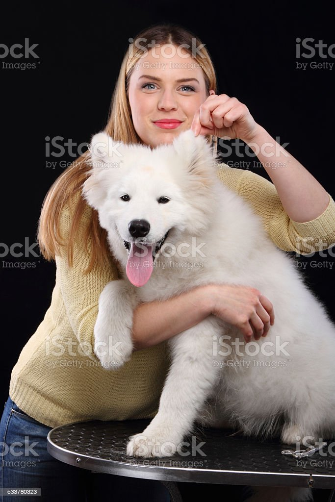 Girl and dog portrait stock photo