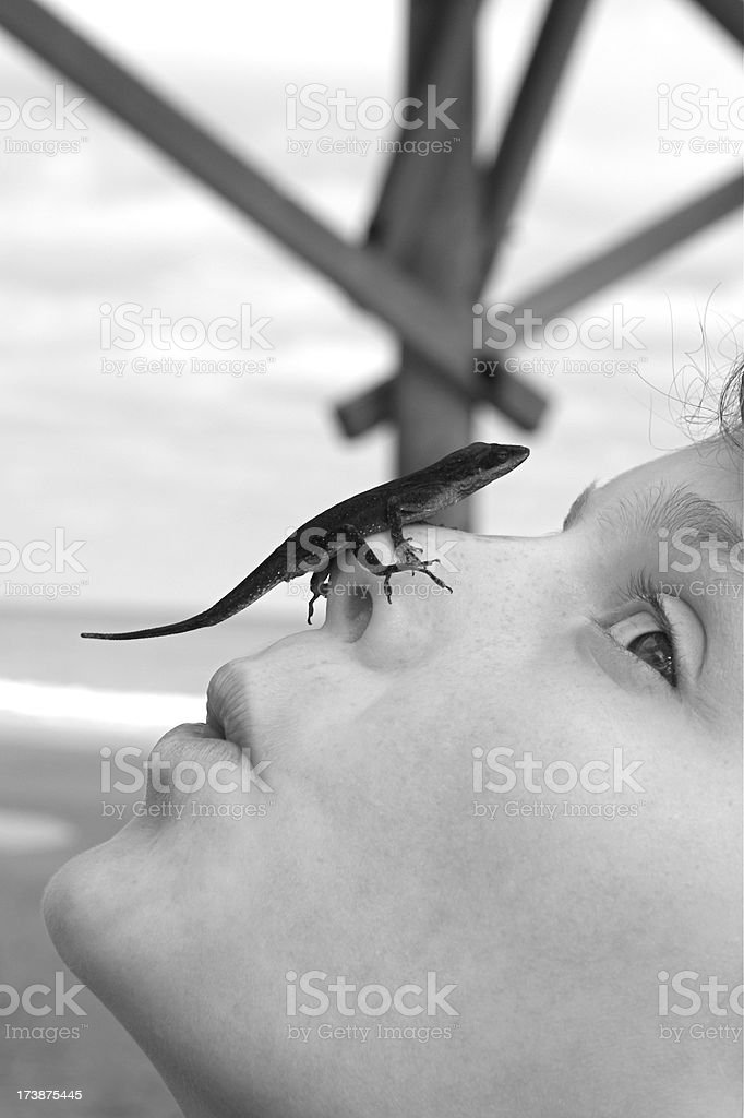 Girl and Gecko royalty-free stock photo
