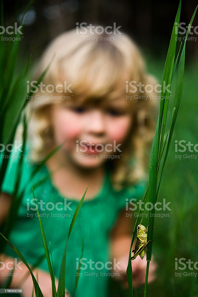 Girl and Grasshopper royalty-free stock photo