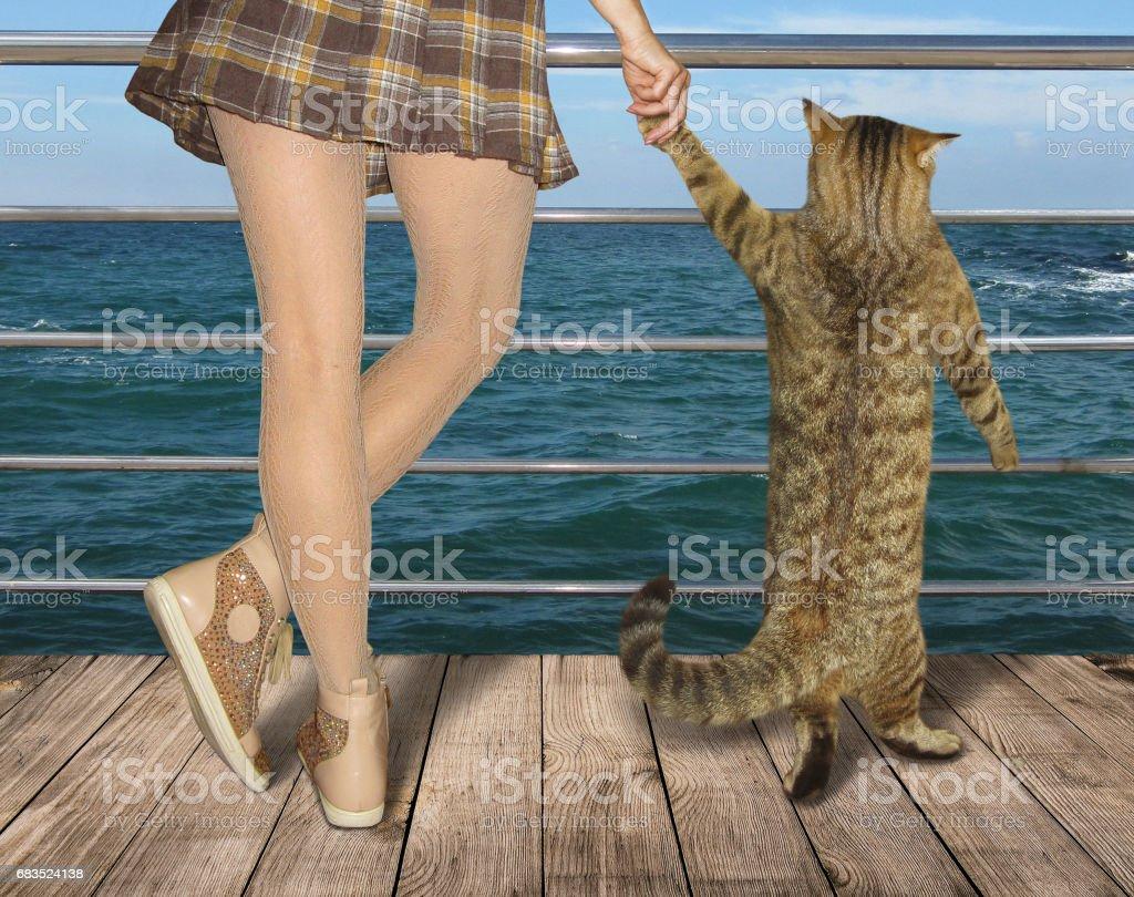 Mädchen und ihre Katze auf dem pier – Foto