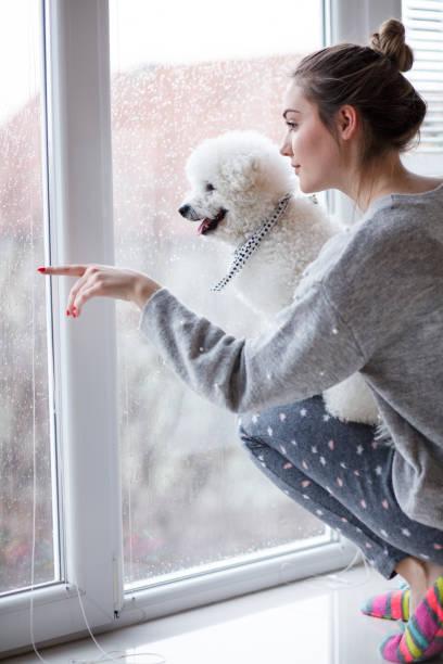 Girl and her dog enjoying rainy day looking through window picture id1137846515?b=1&k=6&m=1137846515&s=612x612&w=0&h=vnvp5tcicqqzpiodt7lhesi qyg9l8kyfk 1fw pcto=