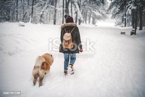 Girl and her dog in snow