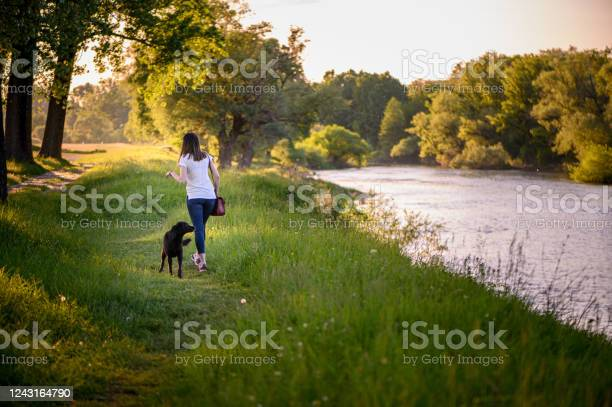 Girl and her dog walking in a park stock photo picture id1243164790?b=1&k=6&m=1243164790&s=612x612&h=s9e iziuhn82r oyhggqe ww78y9chg5gtikwxw73t8=