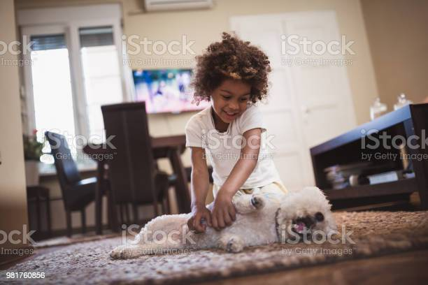 Girl and her white dog indoors picture id981760856?b=1&k=6&m=981760856&s=612x612&h=affxs4ascxgxdkukylotda90fqlszvzpz8gxn9s4kcq=