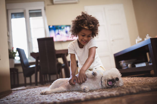 Girl and her white dog indoors picture id981760856?b=1&k=6&m=981760856&s=612x612&w=0&h=buzgg8pgrtbfrt1xw1ouqhcbm46p4qrg2m slpqzvp8=