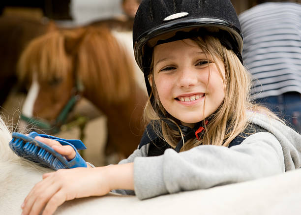 Girl and horses Little girl cleaning her pony with brush pony stock pictures, royalty-free photos & images