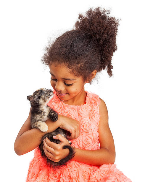 Girl and kitten looking at each other picture id530008490?b=1&k=6&m=530008490&s=612x612&w=0&h=jgid6qgqvdqsjnzx9zw ynhwhxyr maul6f uqrzf4s=