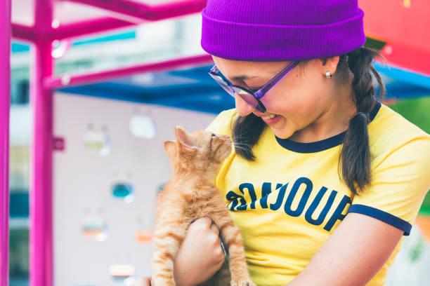 girl and kitten - котик яркий стоковые фото и изображения