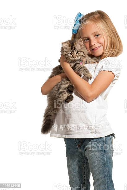 Girl And Kitten Stock Photo - Download Image Now