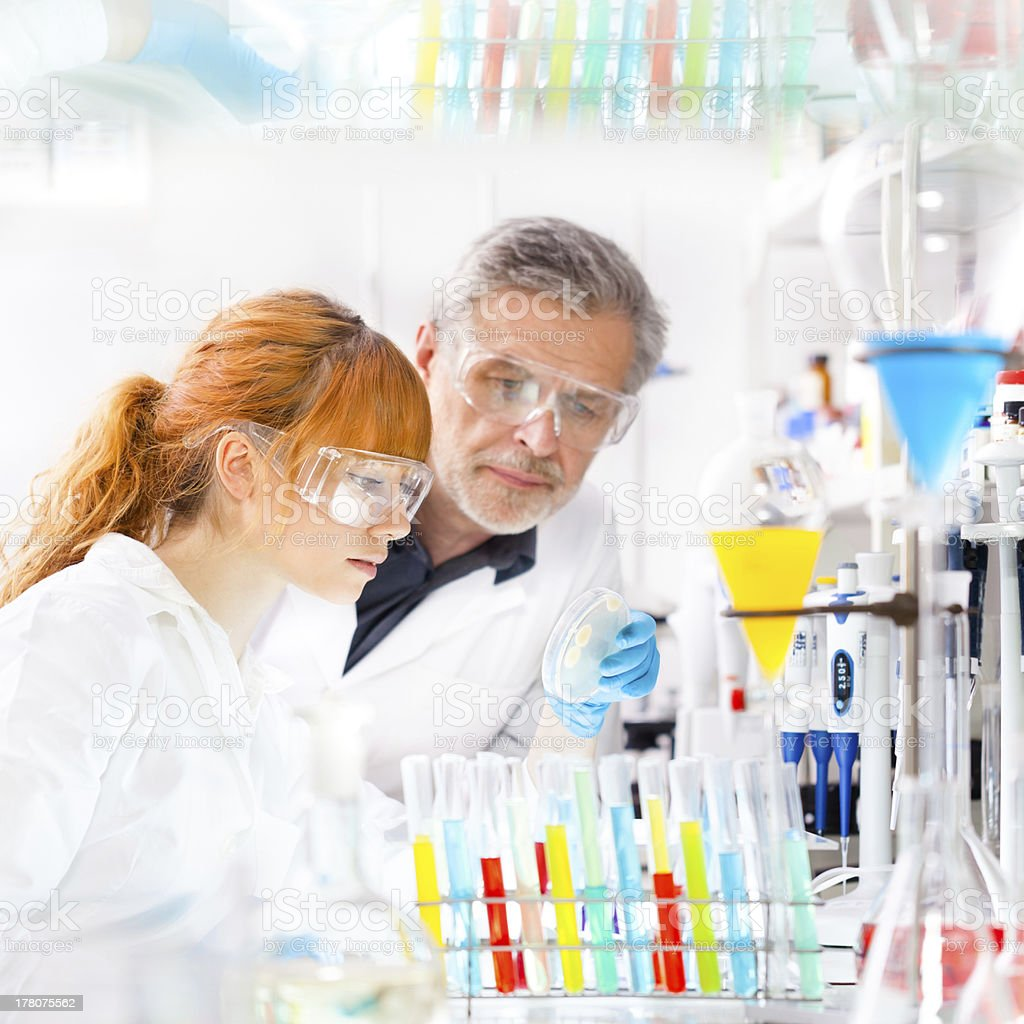Girl and older man in lab coats looking at petri dish in lab stock photo
