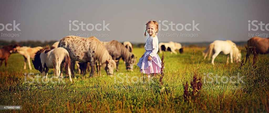 Girl and ponies stock photo