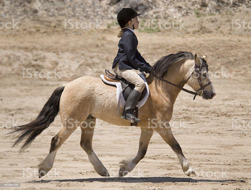 Girl and Pony stock photo