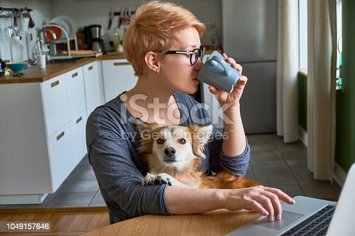 Girl at home with laptop and mixed-breed dog. Hipster freelancer woman works at home. Home office, freelance