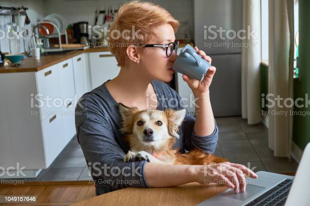 Girl at home with laptop and mixedbreed dog picture id1049157646?b=1&k=6&m=1049157646&s=612x612&h=kuexoeluzcrmiecjjc73z5co3dx8rdb20sfhafjvvx8=