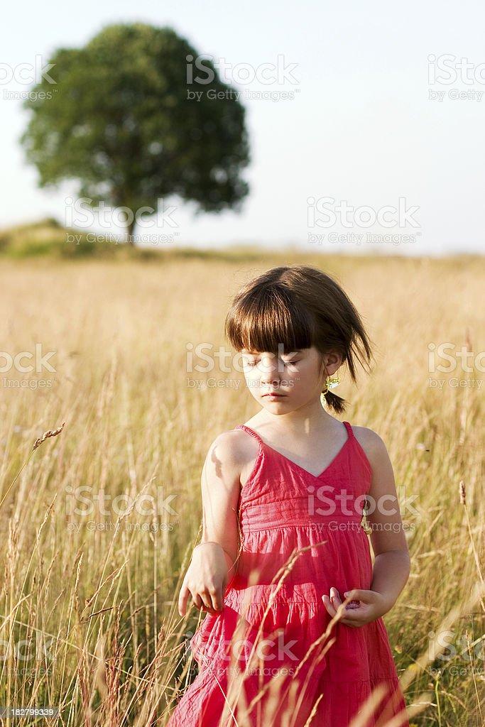 Mädchen im Feld Lizenzfreies stock-foto