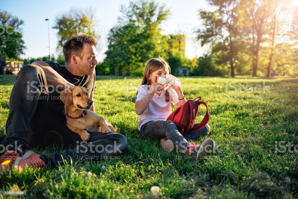 Girl blowing nose and sitting on grass with father stock photo