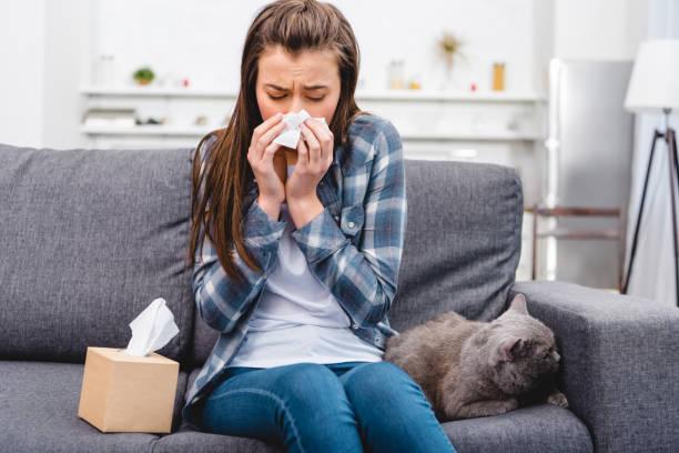 meisje neus waait in gezicht weefsel zittend met kat op bank - allergie stockfoto's en -beelden