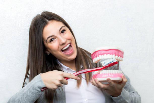 Girl brushing teeth on oversize prosthesis. stock photo