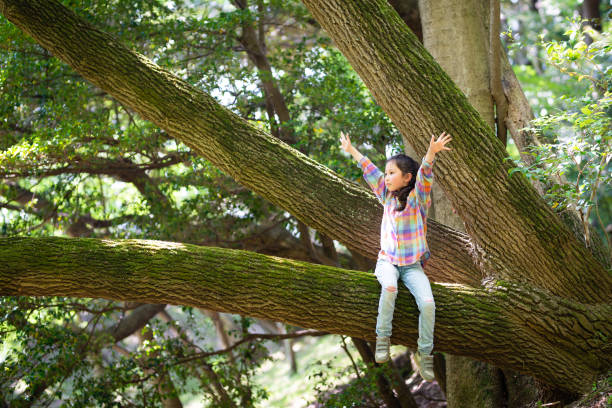 Girl climbing a tree and open her arms stock photo