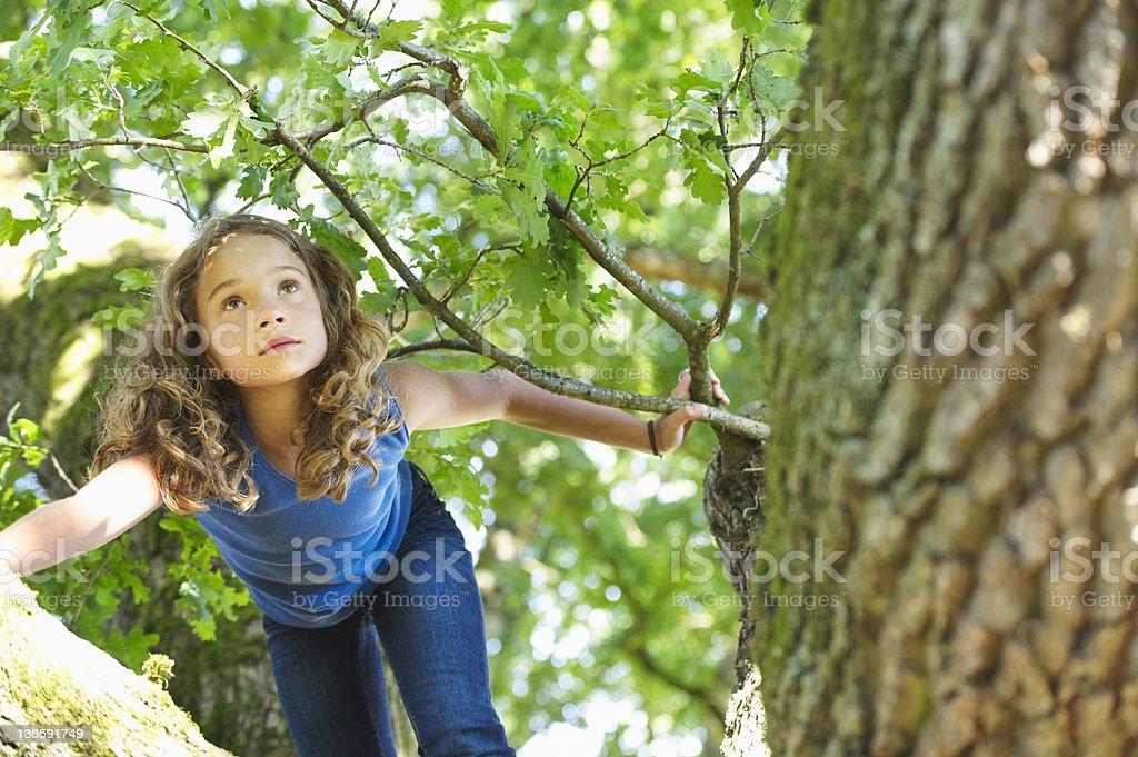 Girl climbing tree stock photo
