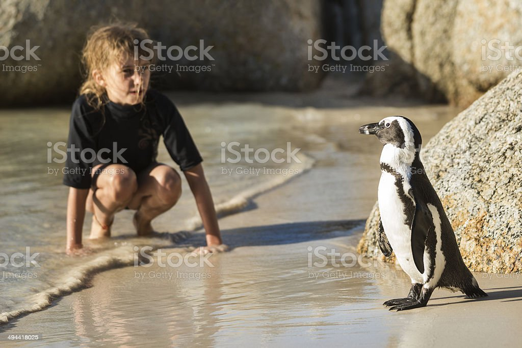 Girl comes face to face with penguin stock photo