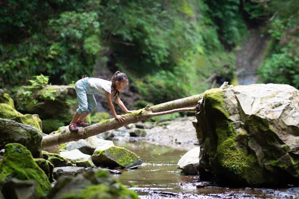 Girl crossing the log bridge stock photo