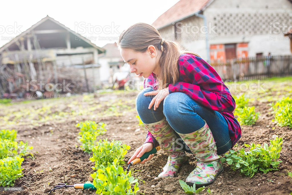 Girl digging in garden stock photo