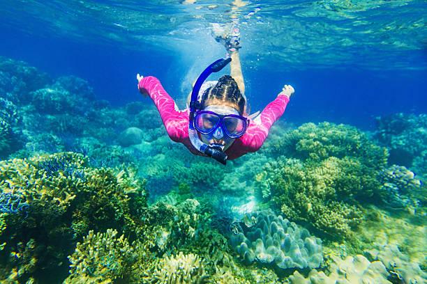Girl dives in a tropical sea stock photo