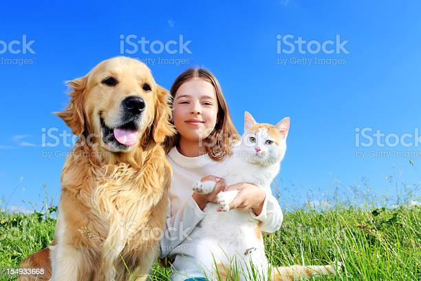 Girl dog and a cat are enjoying outdoor picture id154933668?b=1&k=6&m=154933668&s=612x612&h=1r5p6 rycgu0uacz6304l14na3xethvigrdjj3owgtg=