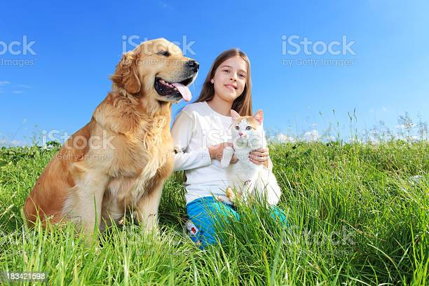 Girl dog and cat are relaxing outdoor picture id183421598?b=1&k=6&m=183421598&s=612x612&h=ftwd1qp1kniipovhzhitdvz1ficr8bkojeboyjpx tu=
