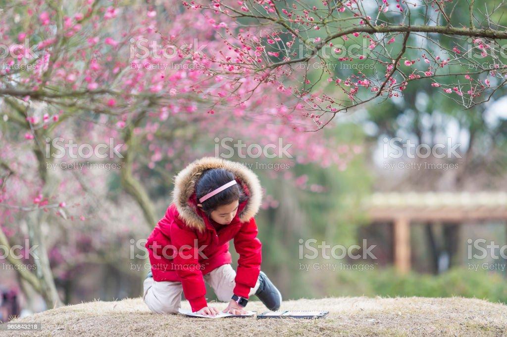 Meisje tekenen onder de bloesem pruimenboom. - Royalty-free Alleen tieners Stockfoto