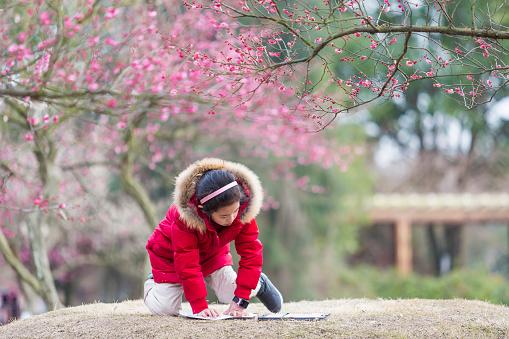 Meisje Tekenen Onder De Bloesem Pruimenboom Stockfoto en meer beelden van Alleen tieners