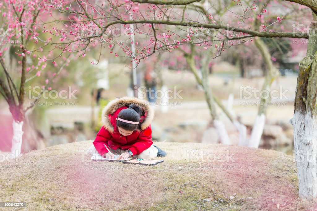 Girl drawing under the blossom plum tree. - Royalty-free Art Stock Photo
