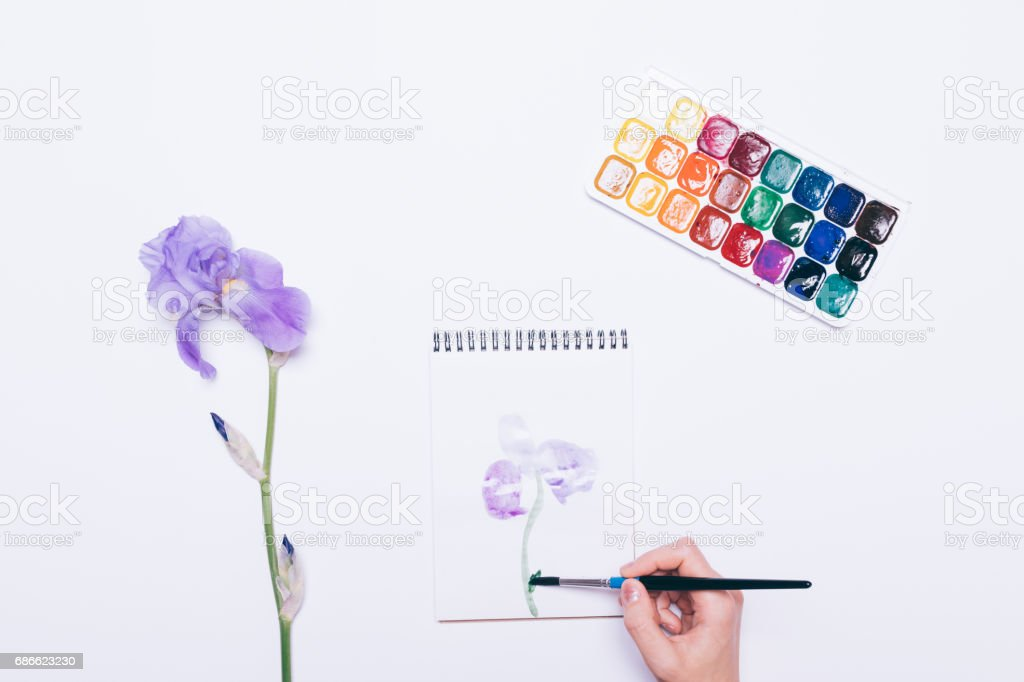 Girl draws a blue flower in a notebook with watercolors royalty-free stock photo
