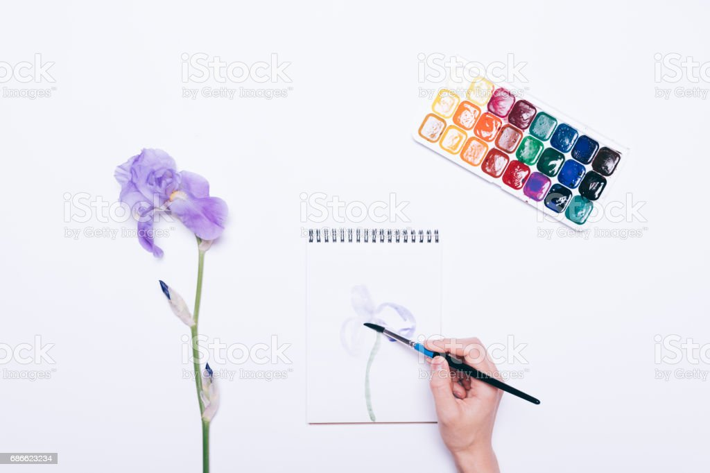 Girl draws a flower in a notebook with watercolors royalty-free stock photo