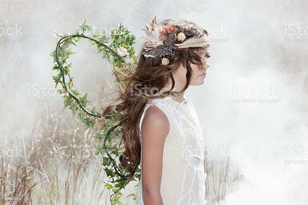 Girl dressed as a fairy stock photo