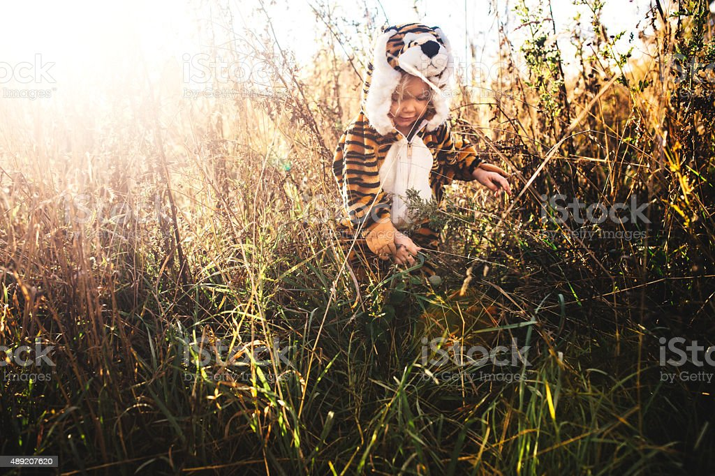 Girl Dressed Up as Lion in Tall Grass stock photo