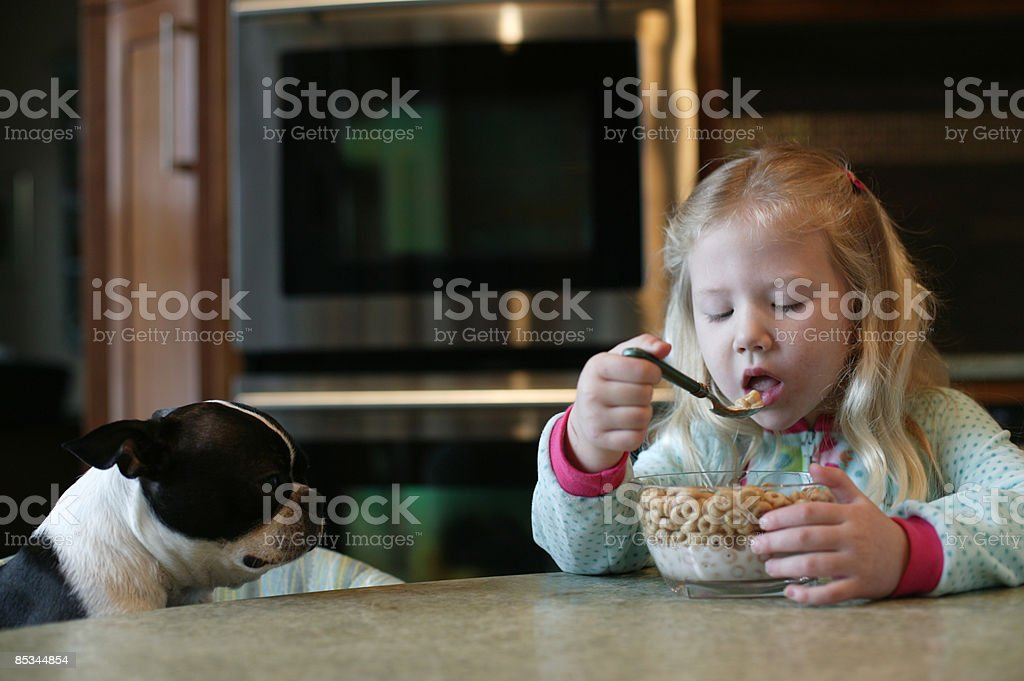girl eating cereal w her dog  royalty-free stock photo