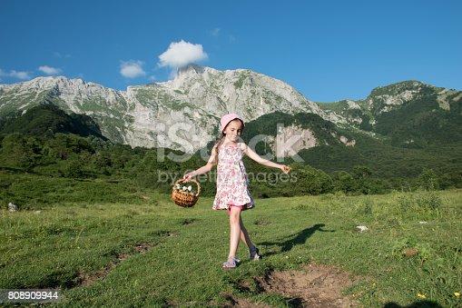 Girl Enjoy Walking In The Alpine Meadow