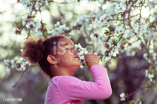 5 years old mixed race girl smelling almonds tree flowers. The picture was taken in natural light.