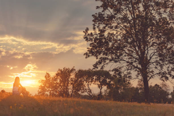 Girl enjoying in the meadow at golden sunset time. stock photo