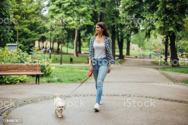 Girl enjoying in the park with her dog picture id1184667877?b=1&k=6&m=1184667877&s=612x612&h=z3tnxejjfs0pes8rdj xciu53w7xztk4miqhoixwowe=