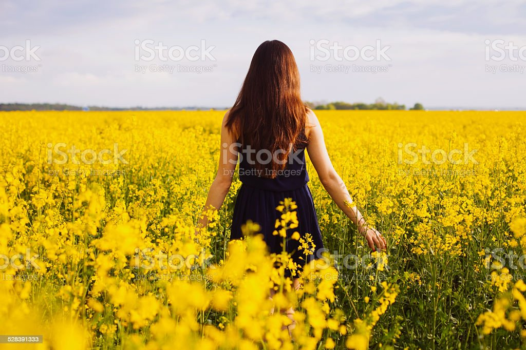 Girl enjoying rapeseed blooming on yellow meadow stock photo