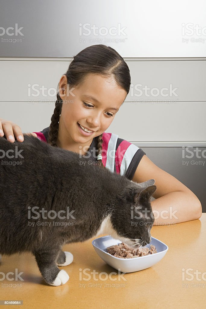 Girl feeding cat royalty-free stock photo