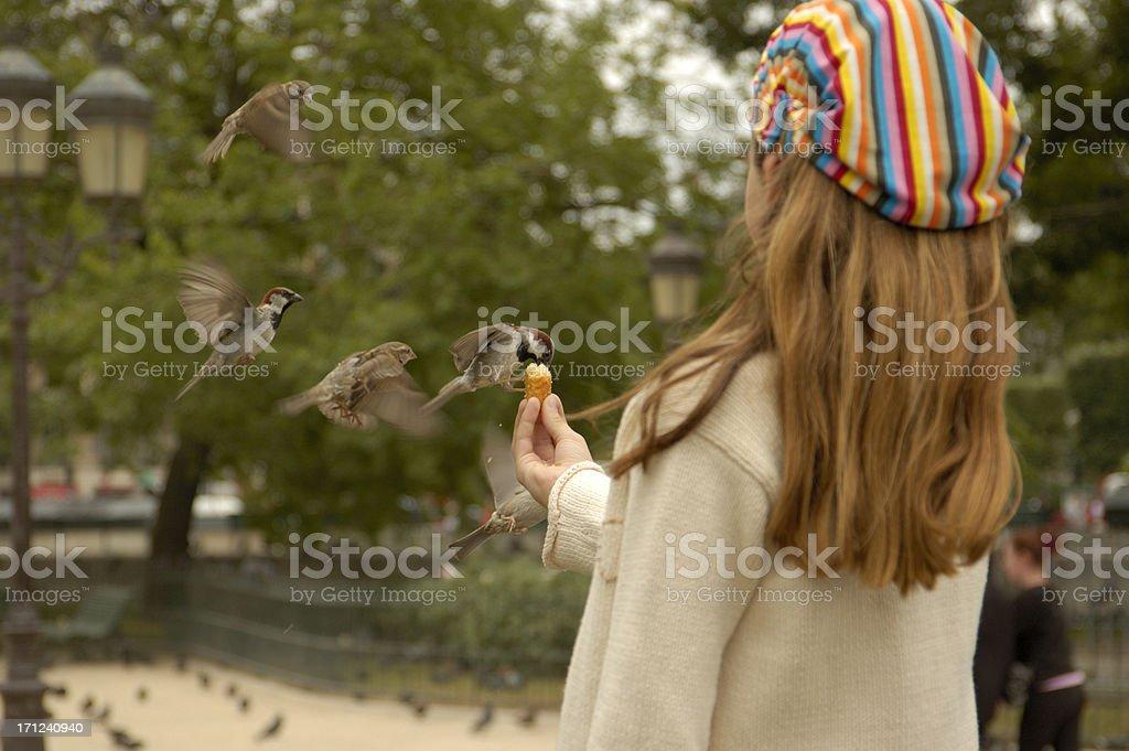 Girl feeding the birds. royalty-free stock photo