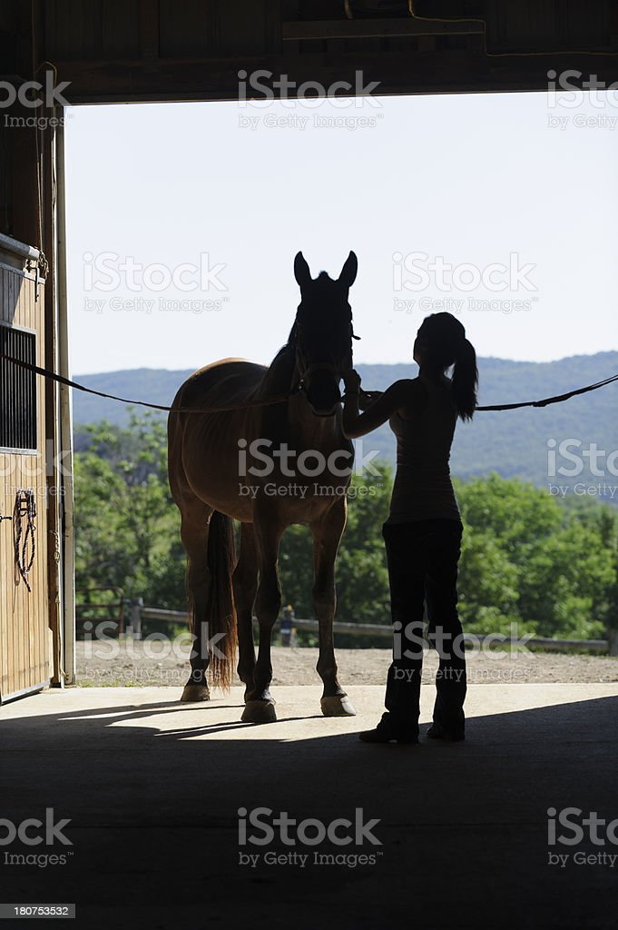 Girl Getting Horse Ready to Ride, Open Barn Door Silhouette stock photo