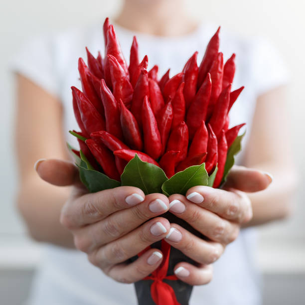 Girl gives a small bouquet made of red hot peppers in the form of a heart stock photo