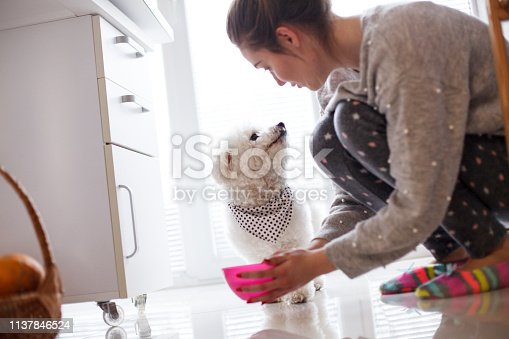 Girl giving water to dog at home.