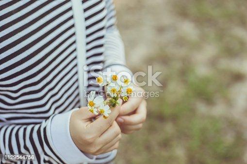 girl hand holding grass flower cute romantic for love background.